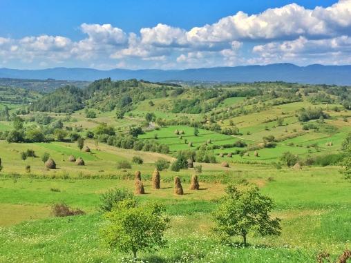 Romanian Countryside