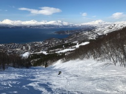 Narvikfjellet ungroomed trail