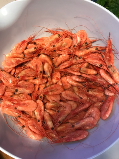 Fresh shrimp for dinner