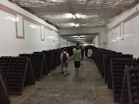 Sparkling wine storage at Cricova Winery. The bottles are stored at the perfect angle for sediment to filter to the neck, and are rotated daily by hand.