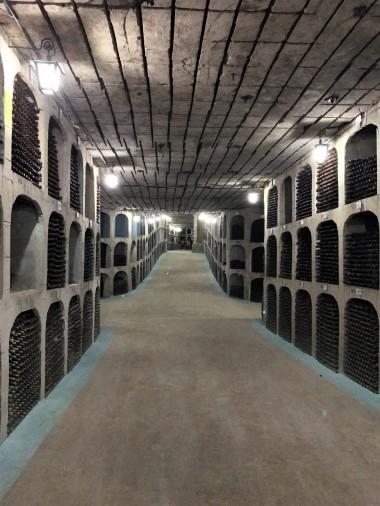 Wine cellar at Mileștii Mici