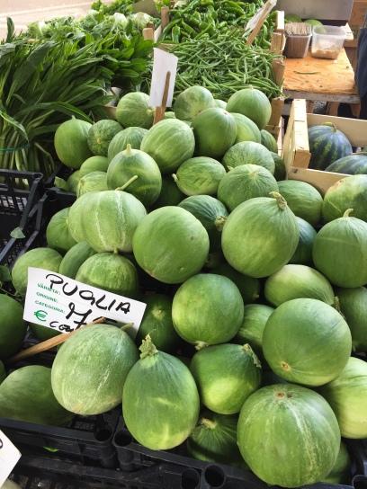 The local cocomero vegetable