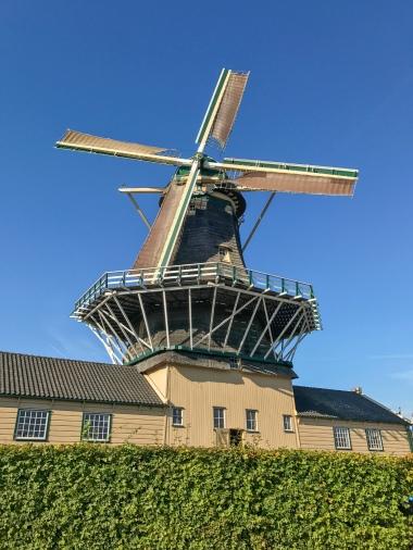 De Heesterboom sawmill in Leiden